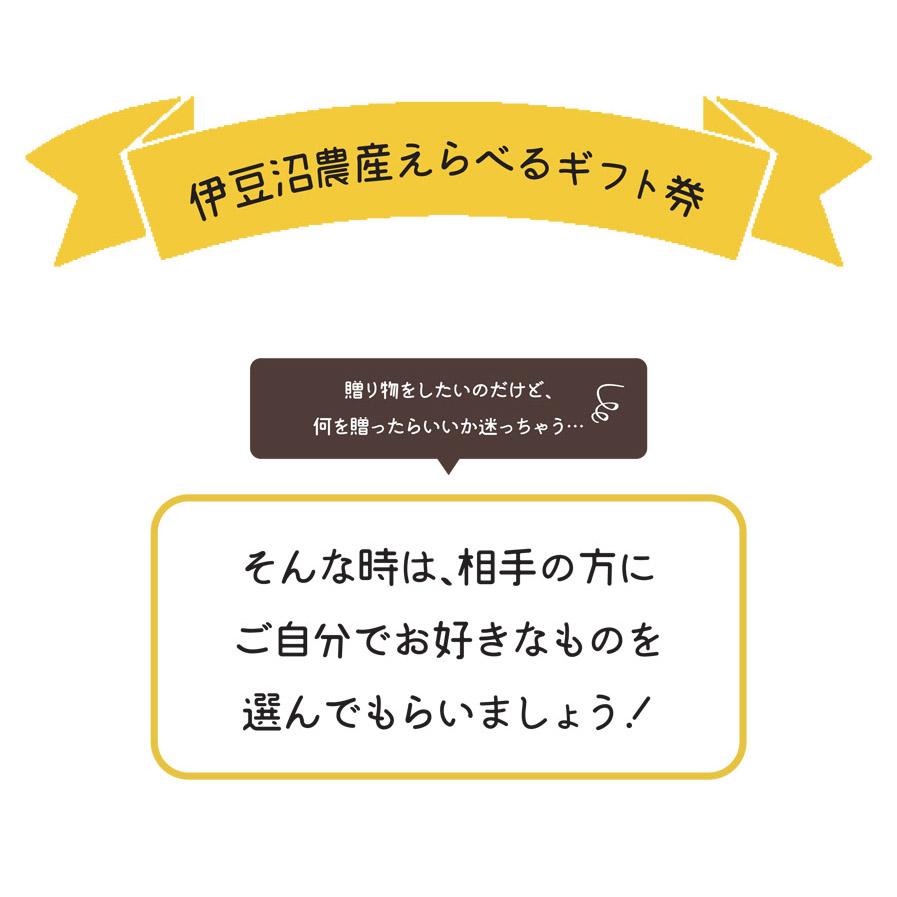 えらべるギフト_LP1-1
