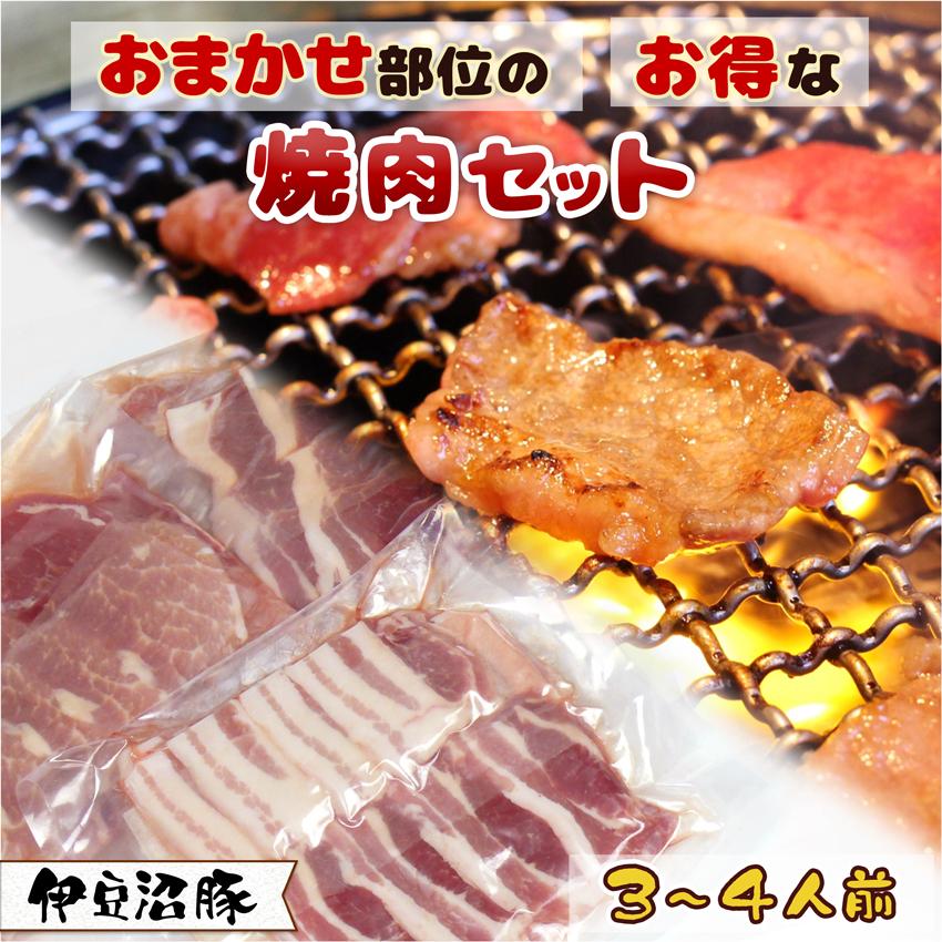 おまかせ部位のお得な精肉セット 3~4人前(750g)