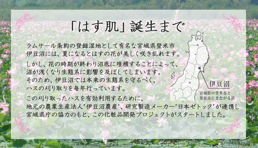 本来の生態系を守るべく刈り取ったハスを有効利用するために、地元の農業生産法人伊豆沼農産、研究製造メーカー日本ゼトックが連携し宮城県庁の協力のもと、この化粧品開発プロジェクトがスタートしました。