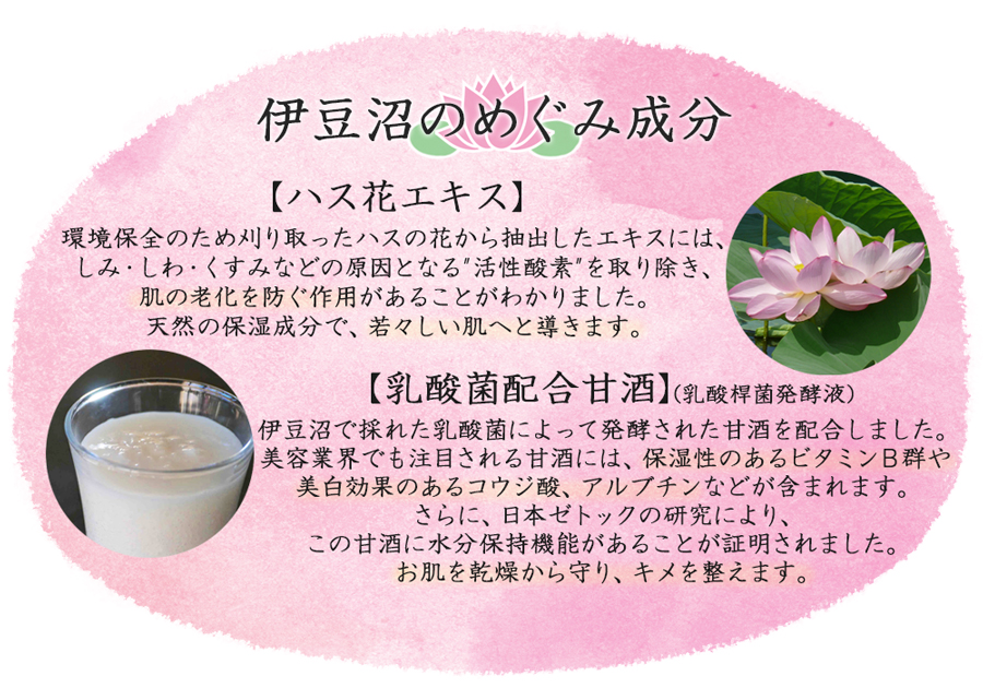 伊豆沼のめぐみ成分 【ハス花エキス】しみ・しわ・くすみなどの原因となる活性酸素を取り除き、若々しい肌へと導きます。【乳酸菌配合甘酒】ビタミンB群や美白効果のあるコウジ酸、アルブチン。お肌を乾燥から守り、キメを整えます。