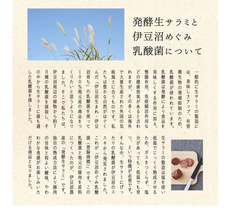 おつまみセット_LP_d(5)