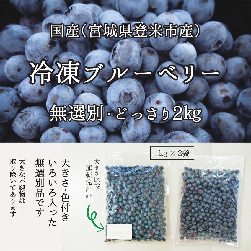 冷凍ブルーベリー 無選別 どっさり 2kg